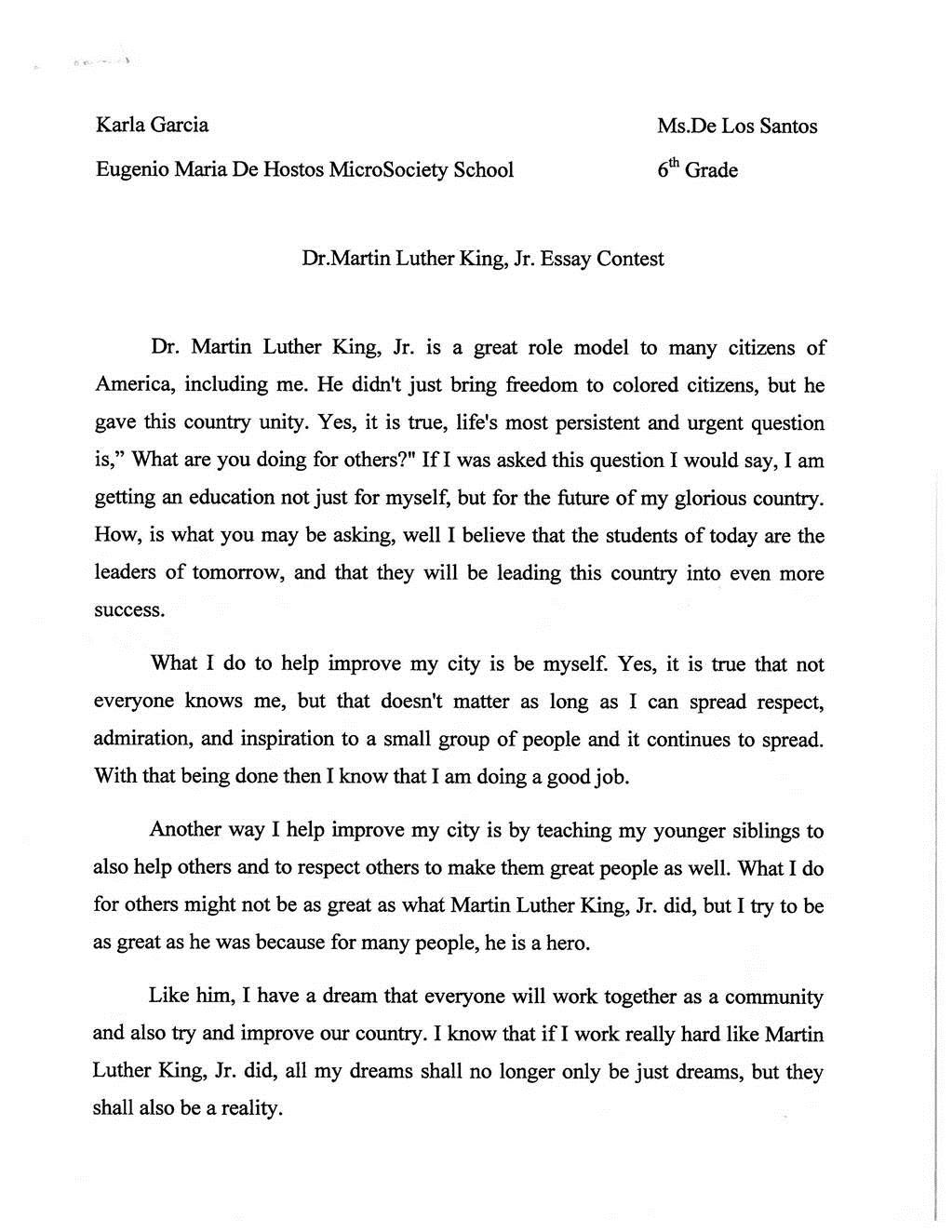 Martin luther king jr day essay