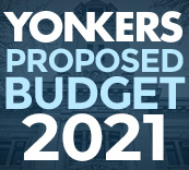BUDGET-2021-BUTTON-small